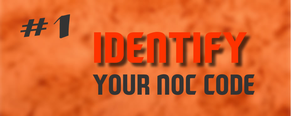 Determine what is NOC code for your occupation